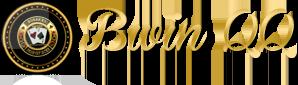 logo bwinqq